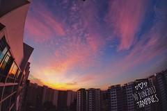 Sunset at Home (shihengcheong) Tags: xt1 samyang 8mm fisheye