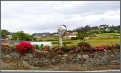 Iglesia de Loiba -  Ortigueira - A Coruña (Luisa Gila Merino) Tags: flores coruña loiba ortigueira paisaje naturaleza iglesia espejo rojo prados nubes