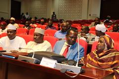 IMG_1728 (UNDP CHAD) Tags: odd sdg snu tchad developement