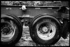 Big wheels keep on turning (FreezerOfPhotons) Tags: cosinavoigtlanderbessar3m jupiter3 kmzjupiter350mmf15 sovieteralens ultrafineextreme400 xtol rainyday rain wheels trucktrailer metal rubber ground trees