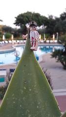 Tree climbing in Sicilia😉 (Alex THELEGOFAN) Tags: climbing summer minifigurine minifigure minifig plant swimmingpool sunny holidays vacation sicilia legography lego