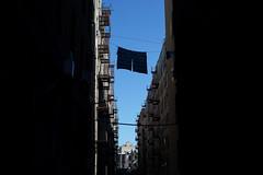 Clothesline (dtanist) Tags: nyc newyork newyorkcity new york city sony a7 konica hexanon 40mm brooklyn brighton beach alley alleyway clothesline line drying