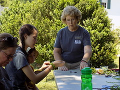 CA_BackyardCampout2017 (vastateparksstaff) Tags: vastateparks caledonstatepark programs paracord bracelets crafts nature outdoors family greatamericanbackyardcampout