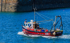 GU58 Miss Pattie (Ian Toms) Tags: fishinglife guernsey guernseylife stpeterport sea guernseyharbours gu58misspattie fishinguk summer fishingboat guernseyfishing sealife fish guernseystyle seascape visitguernsey sunlight fisherman