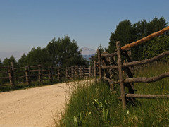 Summer hike (aniko e) Tags: hike road cislon hiking truden trodena altoadige südtirol italien italy outdoors summer fence