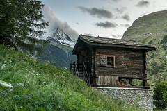 A9906609_s (AndiP66) Tags: zermatt matterhorn alpen alps berge mountains wallis valais schweiz switzerland sigma sigma24105mmf4dghsmart sigma24105mm 24105mm art amount andreaspeters
