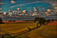 A Piece of Serenity (raymondclarkeimages) Tags: rci raymondclarkeimages 8one8studios usa google outdoor yahoo flickr clouds sky land landscape canon 6d field 70200mm