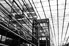 in the glass house (j.p.yef) Tags: petewrfey jpyef yef roof glass architecture germany hamburg zob