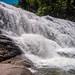 Summer at Cane Creek Falls, TN