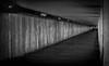 Hastings Seafront (TD2112) Tags: mono blackandwhite bottlealley converginglines blackwhite concrete walls ceiling slabs tonyduke