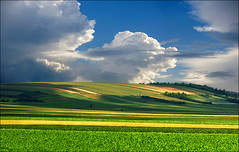 Shadows on fields (Katarina 2353) Tags: landscape fields spring shadows serbia serbiainspired agriculture katarina2353 katarinastefanovic hill valley vojvodina