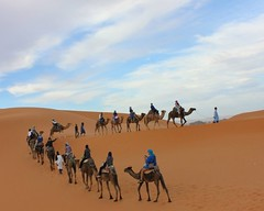 Discover The Wonders Of Morocco Day Tours To Find The Travel Fascination (camelsafarie) Tags: morocco day tours
