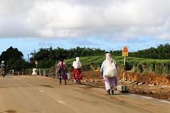 Mauritius: Tea pickers (Ali Bentley) Tags: mauritius iledemaurice africa ilemaurice tea teapicker canon
