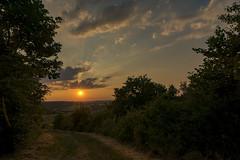 20170620_Mittsommer_0110 (doerrebachtaler) Tags: mittsommer sommeranfang sonnenuntergang soonwald waldböckelheim heimberg midsummer keskikesä midsommar