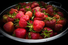 The Best Homegrown (theGR0WLER) Tags: homegrown strawberries fresh freshly picked handpicked garden red green home fruit mobile phone tasty sweet