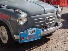P6031565