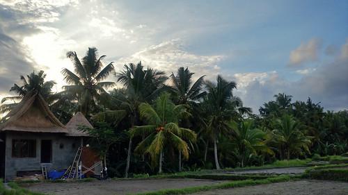 Ubud - Bali, Indonesia