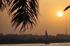 DSC_0350 (RachidH) Tags: sun sunset coucherdusoleil crépuscule sundown cairo egypt nile river rachidh nature felouca sailboat