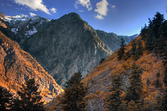 Autumn in the Wasatch Mountains Utah (Utah Images - Douglas Pulsipher) Tags: wasatchmountains mountain mt mts utah ut wilderness winter snowcovered snowy snowcapped autumn summit massif range forest forests forested gambeloak maple maples fallcolors leaves evergreens pines pinetrees sprucetrees spruces conifer conifers steep crag crags craggy highaltitude rocky cliffs evening afternoon bigcottonwoodcanyon