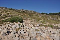 Castro de Baroña. Galicia. Playa (adribouzada) Tags: baroña galicia piedras paisaje naturaleza flora playa