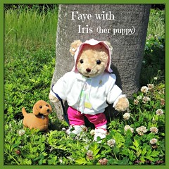 Faye is smiling with Iris (her Standard Dachshund female puppy). (martian cat) Tags: ribbet macro teddybearsinjapan© ©martiancatinjapan ©teddybearsinjapan allrightsreserved© teddybearsinjapan teddybearsinjapan☺ ☺teddybearsinjapan ©allrightsreserved martiancatinjapan© teddybear teddybears collectibles hobbies ☺dogsandpuppiesinjapan ©dogsandpuppiesinjapan dogsandpuppiesinjapan© dogsandpuppiesinjapan ©puppydogsinjapan puppydogsinjapan© puppydogsinjapan ☺allrightsreserved allrightsreserved motivationalposter motivational caption captioncollection ☺martiancatinjapan martiancat martiancat© ©martiancat martiancatinjapan creativity