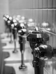 """Fountain"" (buddythunder) Tags: travel usa 2017 seattle america restroom urinals focus plumbing tiles row rank pattern line leadin blackandwhite bw toilet bathroom"