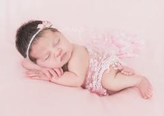 Ellie 12 Days New (Samantha Nicol Art Photography) Tags: baby newborn pink samantha nicol props natural light photographer photography beith girl headband pose north ayrshire scotland