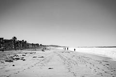 Mission Beach (Matt Battison) Tags: blackandwhite d5300 mattbattison matthewbattison matthewbattisonphotography missionbeach nikon nikond5300 photo photography usa unitedstatesofamerica america areoplane beach blackwhite california mattbattisonphotography plane sandiego sea