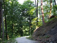 Miroslavac trail 2