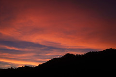 primeiro - first (paulopar.rodrigues) Tags: portugal sintra ceu clouds color cor cores céu light local luz nature naturenatureza nuvens photofoto sky sonya6000 trees árvores