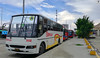 Single server, single state queueing (rnrngrc) Tags: parañaque metromanila philippines ph lagunastarbus starbus 502 udnissandiesel udtrucks nissandiesel columbianmotorscorporation santarosa santarosamotorworks exfoh condor cpb87n fe6b philippinebusphotographersassociation pbpa
