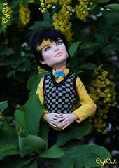 №456 (OylOul) Tags: 16 monster high doll