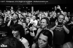 2017 Bosuil-Het publiek bij Hoodoo Monks en The Red Devils 9-ZW