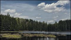 _SG_2017_05_0184_Canada_IMG_6449 (_SG_) Tags: kanada canada land country northamerica nature ca holiday ferien roundtrip 2017 algonquin provincial park georgian bay ottawa river southern ontario
