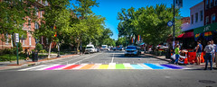 2017.06.09 DCRainbowCrosswalks, Washington, DC USA 6199