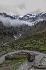 Lawari  Top , Pakiatan (TARIQ HAMEED SULEMANI) Tags: sulemani supershot summer chitral lawari top tariq tariqhameedsulemani chilam josh landscape