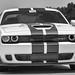 Dodge+Challenger+SRT+Hellcat+%28WannaGoFast%29