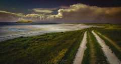 Roaming In The Gloaming (Adam West Photography) Tags: adamwest beach beautiful beauty gloaming green hebrides island landscape machair nature ocean orosay outerhebrides roaming sand scotland sea smercleit southuist travel uk westernisles