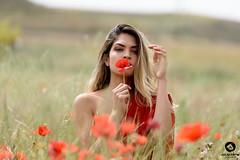 Poppy Girl (Julio Jaime Sánchez Verdú) Tags: alessandra poppy amapola retrato portrait exterior verde rojo green red