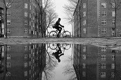 Double up (Birdhouse camper) Tags: copenhagen denmark puddle reflection street blackandwhite blackwhite fujifilm fuji fujifilmx100s bicycle