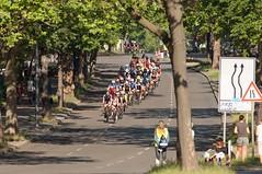 Berlin Velothon 18.6.2017 (rieblinga) Tags: berlin radrennen velothon 1862017 sport steglitzer damm 60km