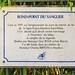 Rond-Point Du Sanglier Plaque