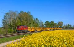 EBM 140 070 (maurizio messa) Tags: ebm br140 mau bahn bayern ferrovia germania germany nikond7100 treni trains railway railroad trenocantiere