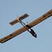 IMG_2631 EoN Primary Glider