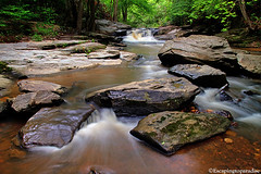 RavenRock+1_9426_TCW (nickp_63) Tags: jumping fish falls raven rock state park north carolina nc harnett county rapids river stream whitewater rocks boulders nature scenic