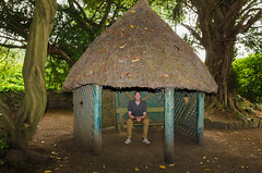 In the Hut - DSC_0880 (John Hickey - fotosbyjohnh) Tags: 2017 june2017 huntershotel cowicklow ireland hut summerhouse garden outdoor male person