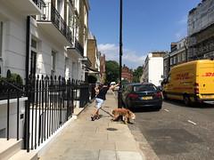 Max leaves his mark (jovike) Tags: animal dog espe london street woman van