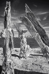 Out with the old...in with the new. Felixstowe. (Sean Hartwell Photography) Tags: felixstowe port jetty ir infrared industry industrial sea seaside seaweed monochrome blackandwhite suffolk england uk maritime shipping
