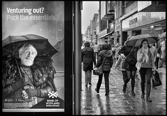 Always Carry a Brolly (Photoburglar) Tags: edinburgh scotland princesstreet rain advertisement busstop wet nikon d610 street urban blackand white monochrome