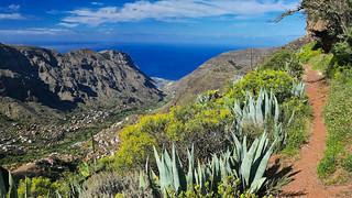 Valle Gran Rey - Camino La Tranquilla